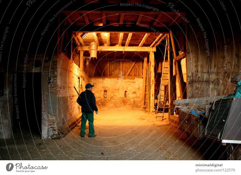 Licht aus.. dunkel Erkenntnis Landwirt Forke Holz Bauernhof Staub Haushuhn Mütze Stroh Senior Schatten hell Tor dreckig Lampe Kontrast