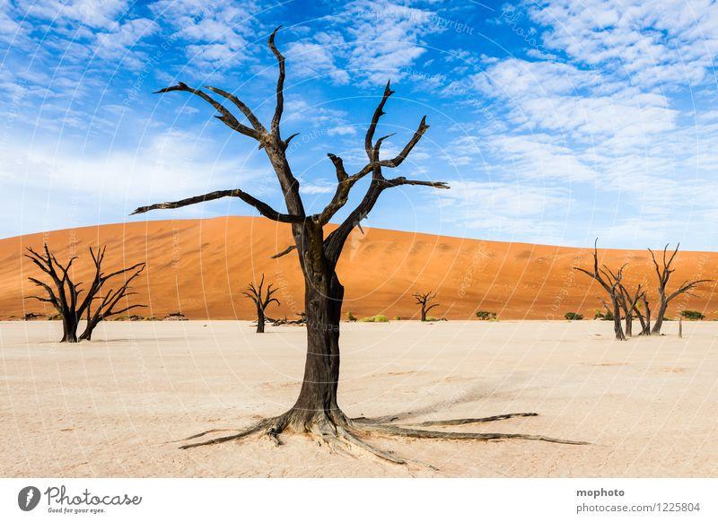 Tal des Todes #1' Himmel Natur Ferien & Urlaub & Reisen alt blau Pflanze Baum Landschaft Wolken Ferne Wald Umwelt gelb Wärme orange Tourismus