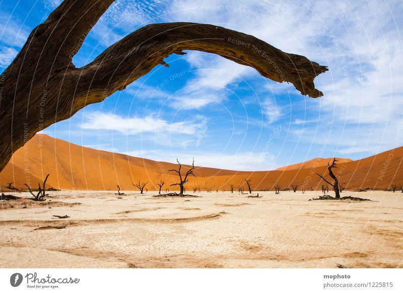Tal des Todes #2' Himmel Natur Ferien & Urlaub & Reisen alt blau Pflanze Baum Landschaft Wolken Ferne Wald Umwelt Wärme Sand orange