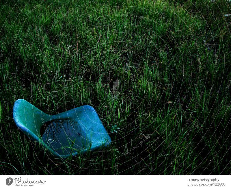Freiluft-Kino Sitzgelegenheit Platz Sessel hocken Stadion ausgemustert Moor See Wiese Teich untergehen Biotop nass Gras Halm Pflanze Umwelt Umweltverschmutzung