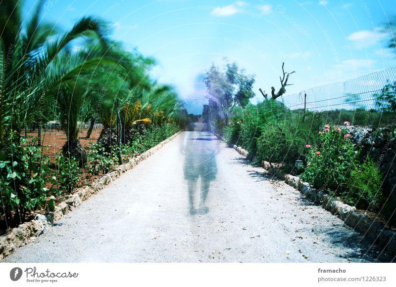 ghost Mensch Himmel Natur Mann blau grün Sommer Einsamkeit Landschaft Ferne Erwachsene Umwelt Gefühle Tod Garten außergewöhnlich