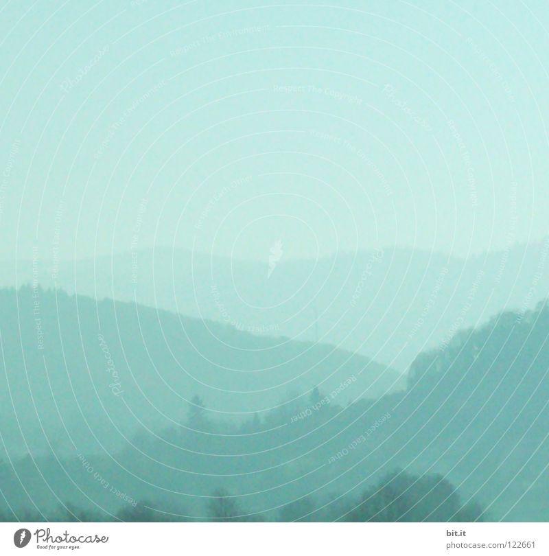 AUSSICHT II Himmel Natur blau Ferien & Urlaub & Reisen Baum Einsamkeit Winter Wald Ferne kalt Berge u. Gebirge Schnee Holz Luft Linie Horizont