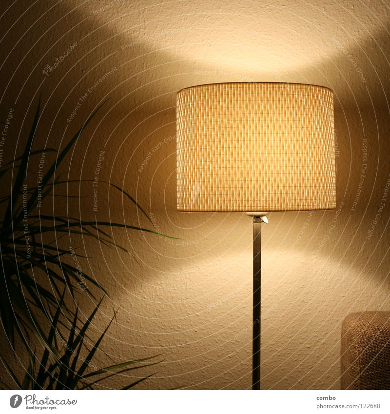 Retrolampe im Wohnzimmer weiß grün Pflanze ruhig Blatt Lampe Erholung grau Wärme Zufriedenheit Stimmung Raum Metall Design Wachstum retro