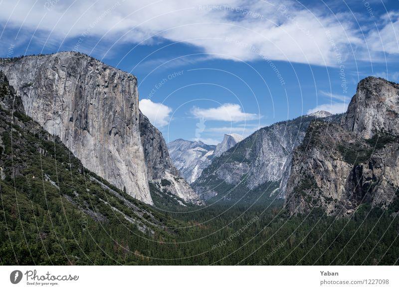 Yosemite Tunnel View Ferien & Urlaub & Reisen Ausflug Ferne Sightseeing Sommer Berge u. Gebirge Klettern Bergsteigen Landschaft Schönes Wetter Wald Hügel Felsen