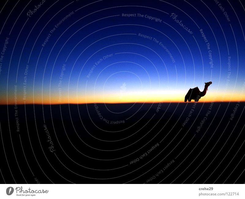 blue horizont Ferien & Urlaub & Reisen dunkel Panorama (Aussicht) Horizont heiß gelb Licht schwarz Ägypten Himmel blau Sonne Zigarettenmarke Abend groß