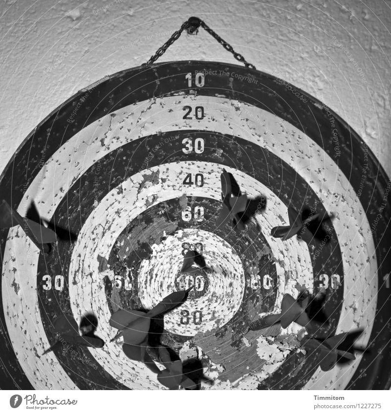 Kindheitserinnerung | Pfeilweitwurf. Sport Darts Dartpfeil Dartscheibe Mauer Wand Ziffern & Zahlen alt kaputt grau schwarz weiß Gefühle Erinnerung Schaden Loch