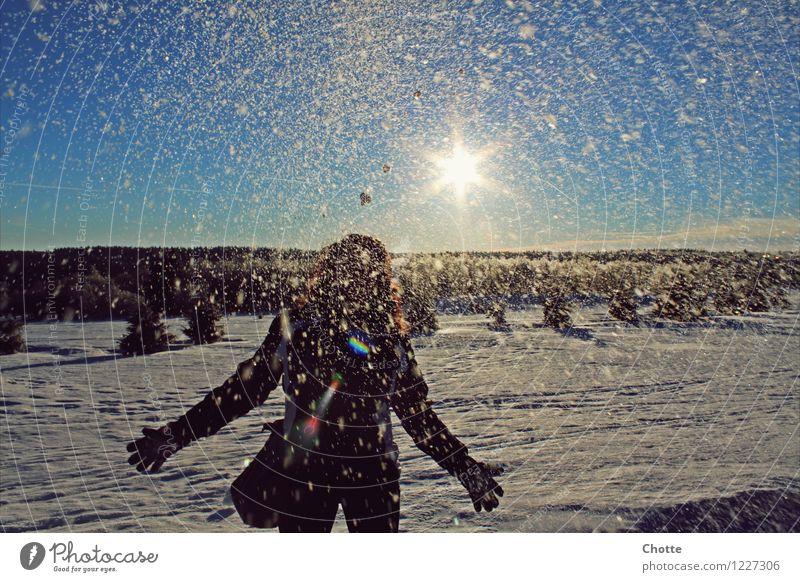 Winter wonder land. Natur blau weiß Freude kalt Berge u. Gebirge Liebe natürlich feminin Sport Glück lachen träumen Schneefall frisch