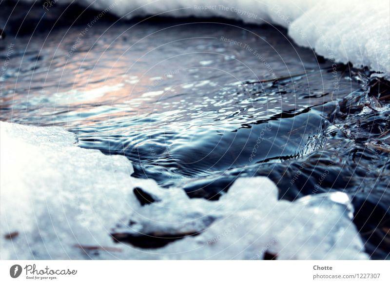 Eiserner Bach. Natur Wasser ruhig Winter Schnee Frost