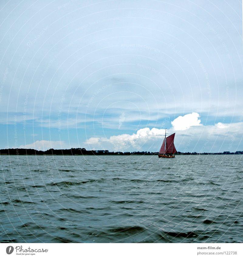 sonntag Segelboot Fischer Fischerboot rot braun Fischereiwirtschaft Vorpommersche Boddenlandschaft Fischland-Darß-Zingst Takelage Segeln Sommer Meer fangen