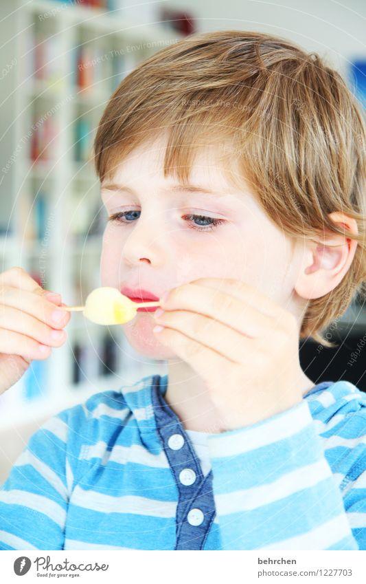 verbissen...eis essen Mensch Kind blau schön Hand Gesicht Auge Essen Junge Familie & Verwandtschaft Haare & Frisuren Kopf träumen Körper blond Kindheit