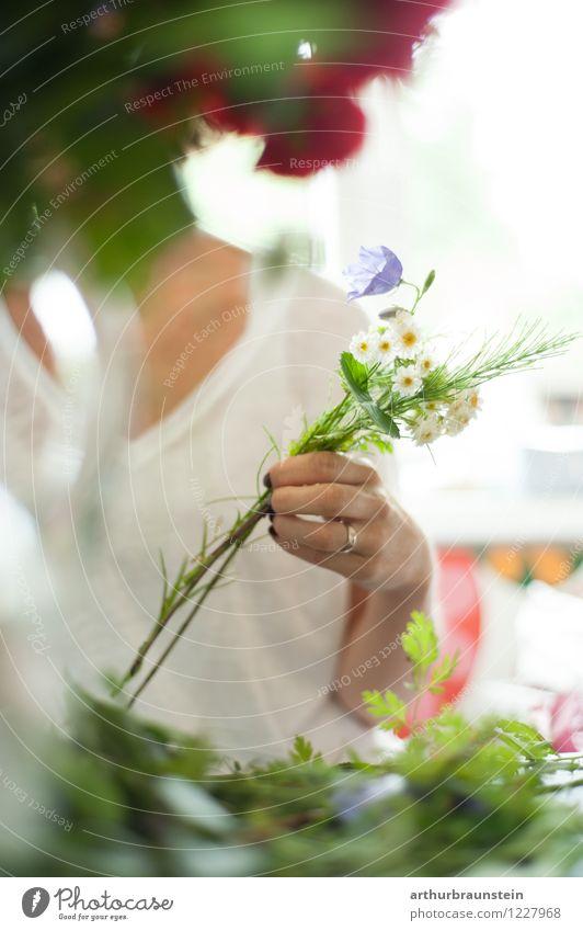 Gartenblumenstrauß binden Mensch Frau Jugendliche Pflanze Sommer Junge Frau Blume Blatt Erwachsene Leben Blüte Frühling feminin Stil Lifestyle