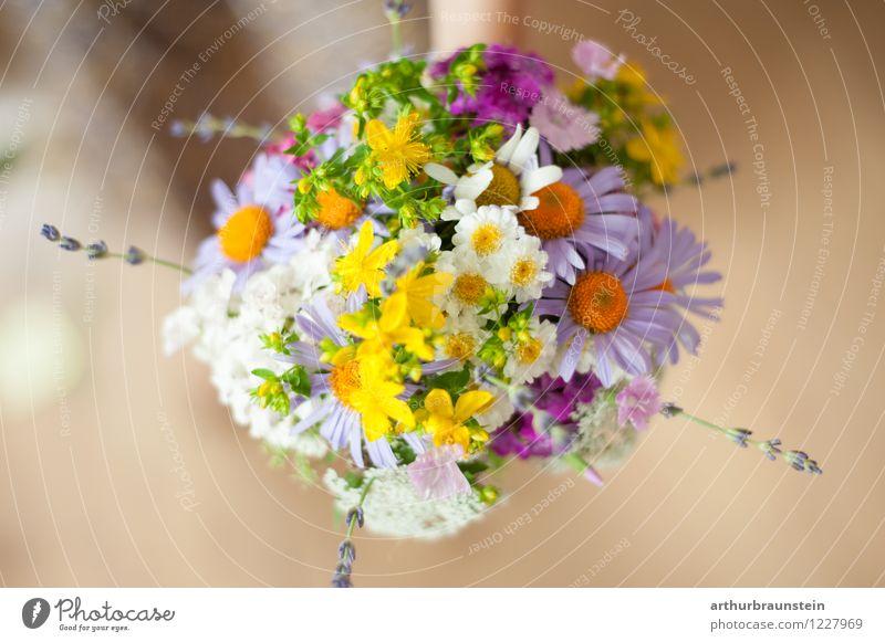 Blumenstrauß aus Gartenblumen Natur Pflanze schön grün Sommer weiß gelb Leben Frühling Blüte natürlich Stil Holz rosa orange