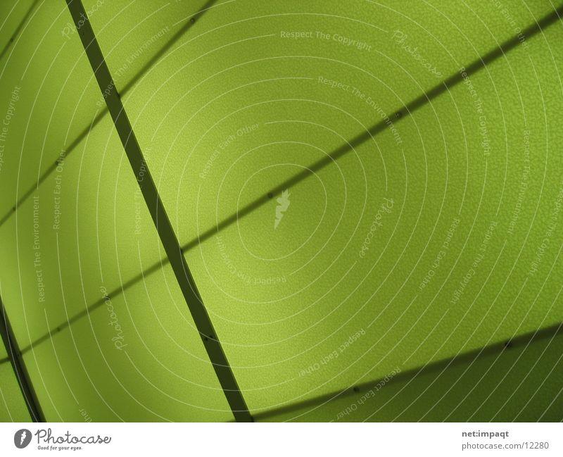 Green Lights grün Wand Stil Club Belichtung Fototechnik
