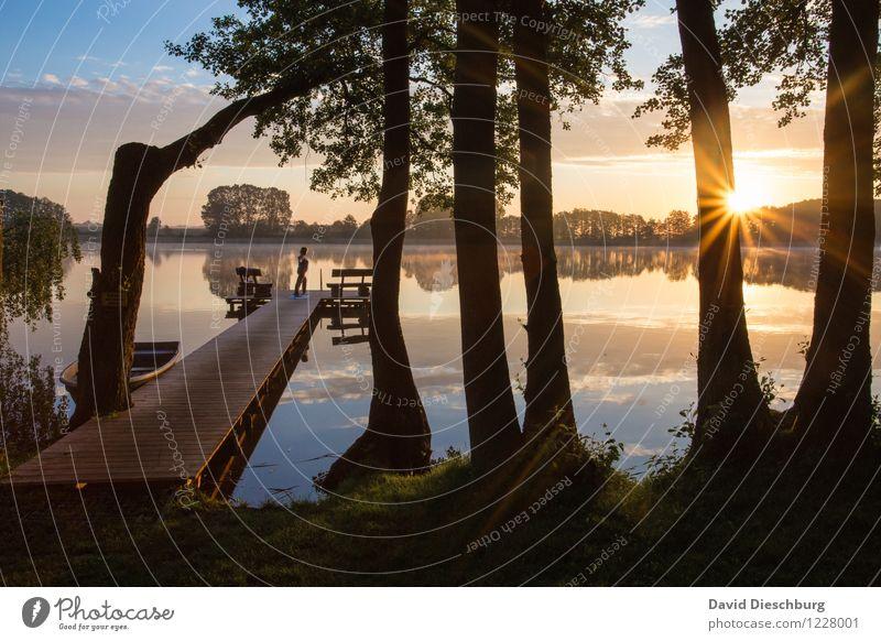 Seeromantik Himmel Natur Ferien & Urlaub & Reisen Sommer Baum Erholung Meer Landschaft ruhig Wolken Ferne Frühling Küste Sport Freiheit See