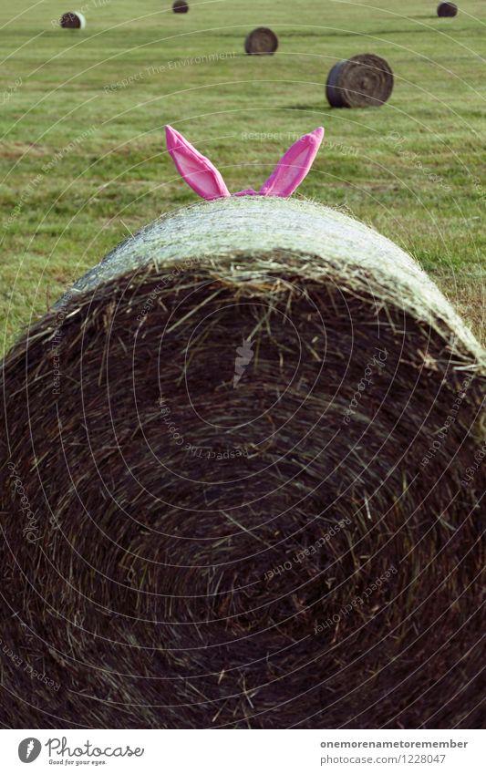 Suchbild Wiese Spielen Kunst rosa ästhetisch Kreativität Ohr verstecken Hase & Kaninchen Kunstwerk Kostüm Strohballen Hasenbraten Hasenohren Bilderrätsel