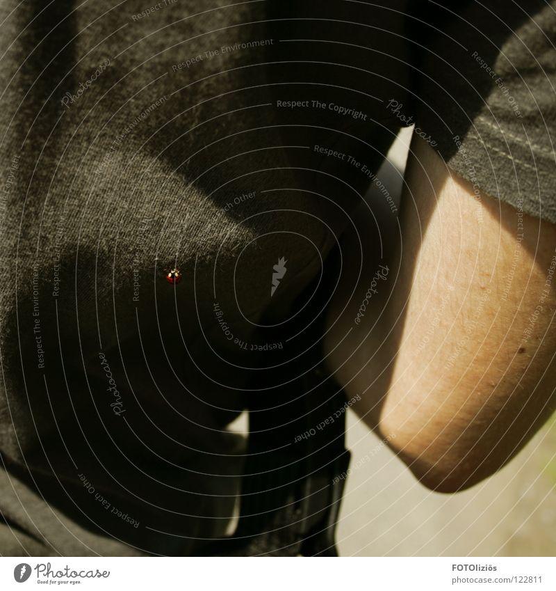 Unerwarteter Besuch Sommer Wärme Rücken Arme Flügel T-Shirt Punkt Physik Insekt Marienkäfer Gelenk Unterarm Oberarm