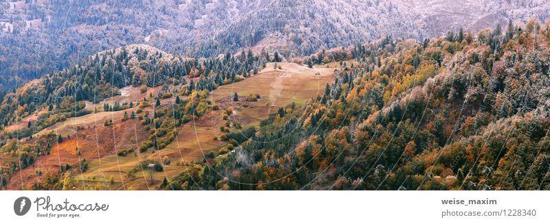 Der erste Schnee legte sich nieder Natur Ferien & Urlaub & Reisen Pflanze schön Wasser Baum Landschaft Blatt Wald Umwelt Berge u. Gebirge Herbst Wiese Holz