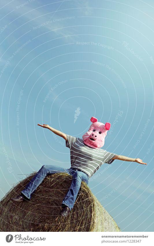 Schweinekopp! Freude lustig feminin Kunst rosa sitzen ästhetisch hoch Maske Kunstwerk Kostüm Karnevalskostüm Schwein spaßig Spaßvogel Schweinefleisch