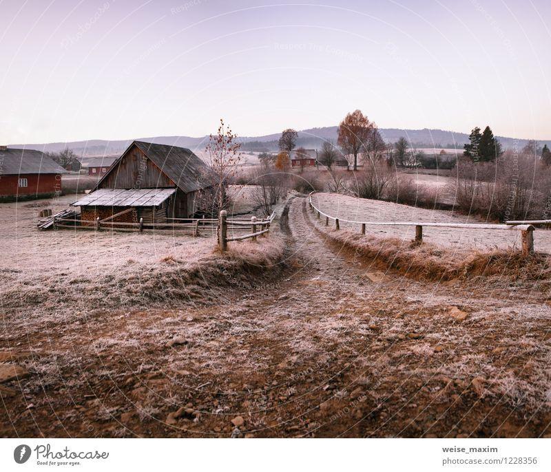 November Morgen im Karpaten-Dorf Himmel Ferien & Urlaub & Reisen Pflanze Baum Erholung Landschaft Haus kalt Berge u. Gebirge Wand Herbst Wiese Mauer Garten