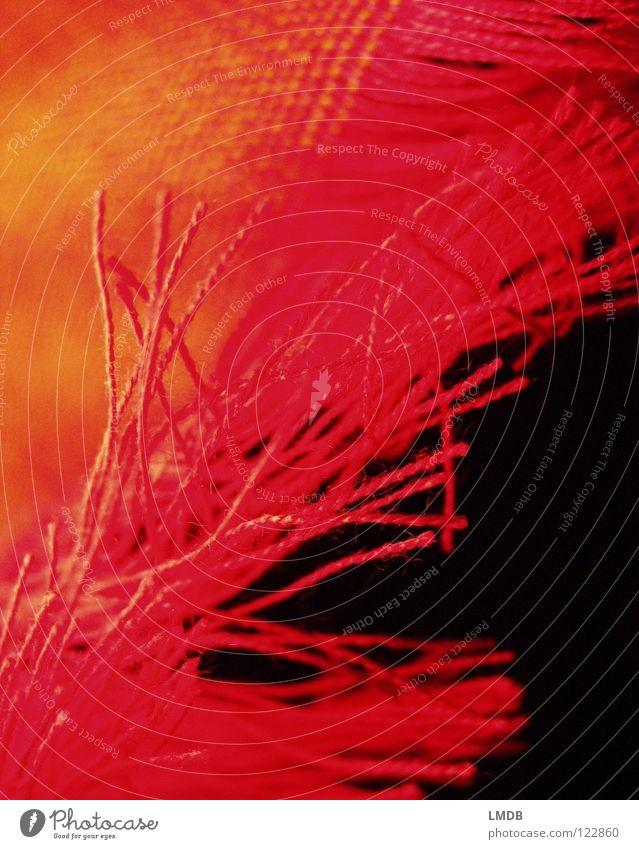 fransig Stoff Schal rot gelb schwarz Muster Textilien gewebt Am Rand Bekleidung Franse orange augefranst Nähgarn