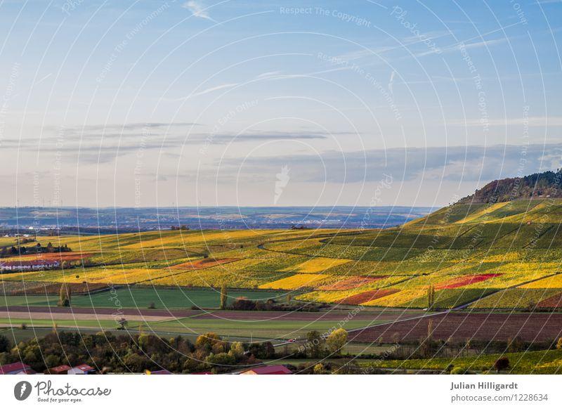 buntes land #2 Natur Ferien & Urlaub & Reisen Pflanze Sommer Sonne Landschaft Ferne Umwelt gelb Gefühle Freiheit Lifestyle Feld Tourismus frisch Idylle
