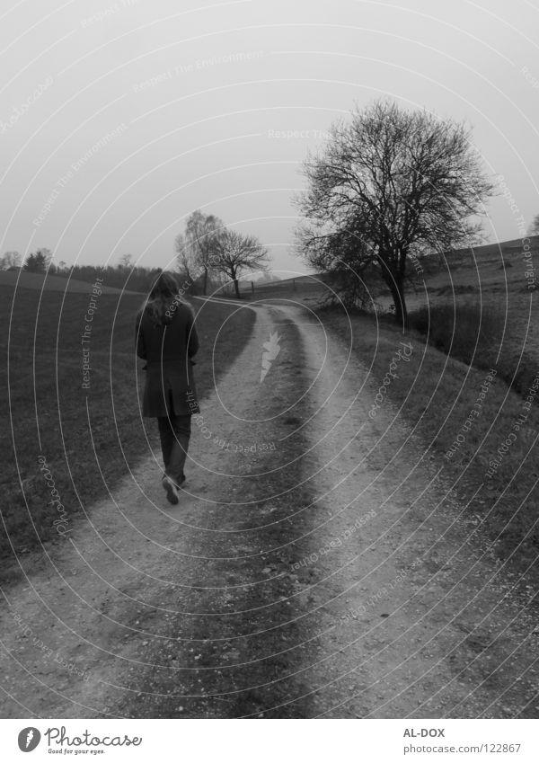 Dieser Weg....... Herbst Zukunft kalt Einsamkeit Trauer Schwarzweißfoto Verzweiflung Wege & Pfade Mensch Ferne Stein
