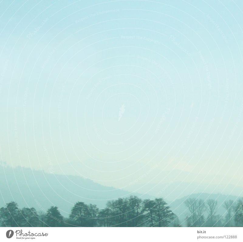 SKYLINE Himmel Natur blau Ferien & Urlaub & Reisen Baum Einsamkeit Wolken Winter Wald Ferne kalt Berge u. Gebirge Schnee Holz Luft Linie