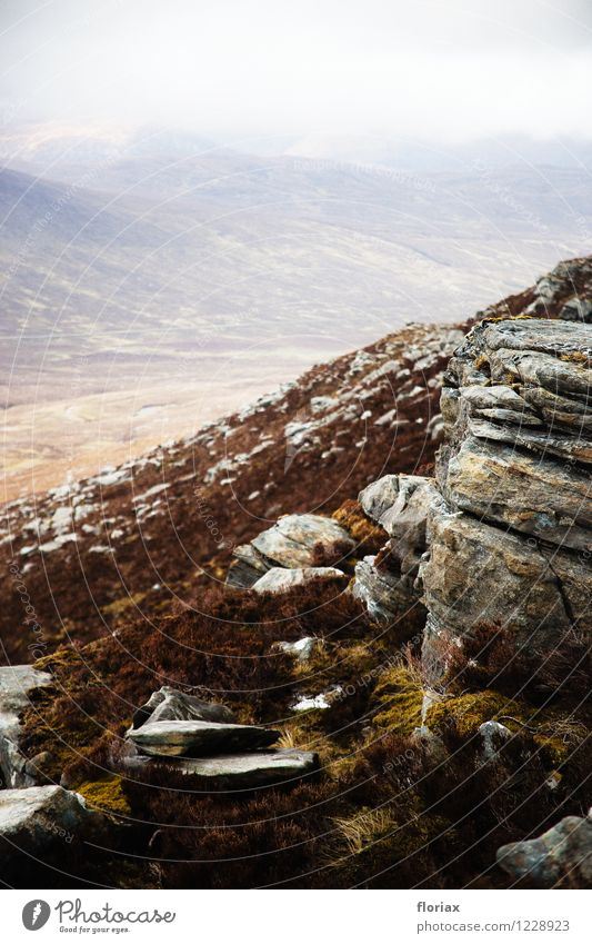 Highlands 1/5 Natur Ferien & Urlaub & Reisen Pflanze Landschaft Ferne Berge u. Gebirge Umwelt Freiheit Felsen Freizeit & Hobby Tourismus Nebel Erde Ausflug