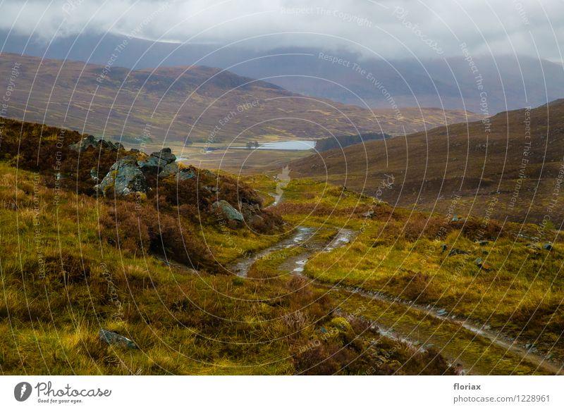 Highlands 5/5 Himmel Natur Ferien & Urlaub & Reisen Pflanze grün Landschaft Wolken Ferne Umwelt Berge u. Gebirge Gefühle Wege & Pfade grau Freiheit braun Luft