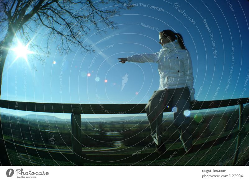 WEGWEISEND Frau blau schön Baum Ferien & Urlaub & Reisen Sonne Ferne Landschaft Freiheit Wege & Pfade Erde sitzen Richtung zeigen Wegweiser gefallen