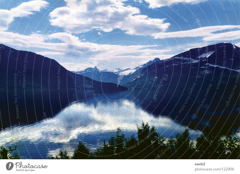 Fjordland ruhig Ferne Sommer Berge u. Gebirge Umwelt Natur Landschaft Pflanze Wasser Himmel Wolken Horizont Schönes Wetter Baum Küste glänzend Idylle Pause