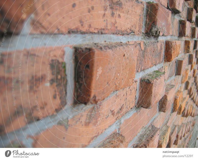 The Wall Mauer Wand Backstein rot Fuge Architektur kaminrot Stein