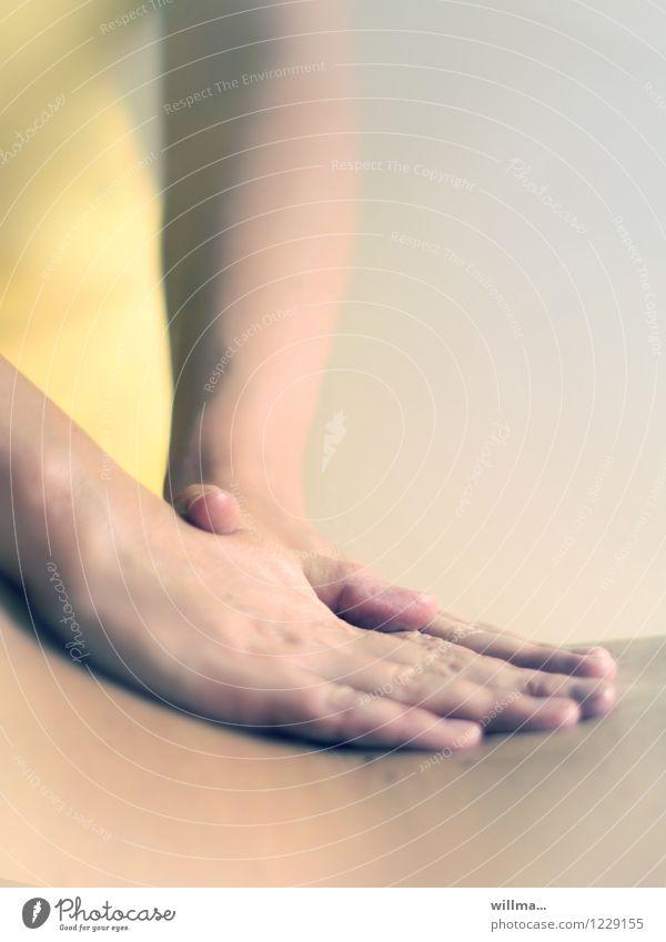 massage des rückens in der physiotherapie Erholung Hand Gesundheit Gesundheitswesen Rücken Wellness Wohlgefühl Schmerz harmonisch sanft Alternativmedizin