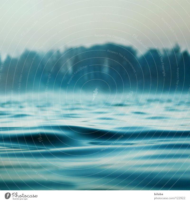 Wellen auf dem See im Winter Wasser liquide Flüssigkeit Wasseroberfläche weich zart ruhig beruhigend Nebel Element grau dunkel leer Luft ursprünglich tief kalt