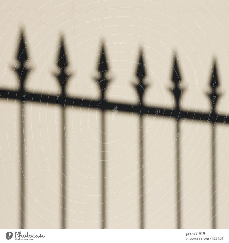Borderline Zaun Grenze schwarz weiß Gitter Raster Kunst Kunsthandwerk Verkehrswege Schwarzweißfoto Schatten Spitze Spieße Wurfspieß