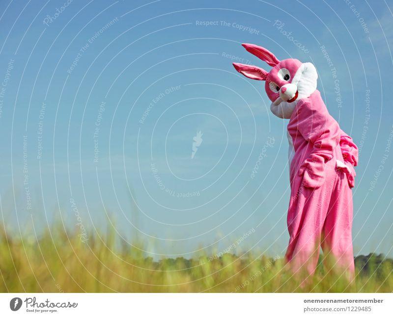 'Down' - 'Set' - 'Hut' Kunst Kunstwerk Abenteuer ästhetisch rosa Hase & Kaninchen Hasenohren Hasenbraten Hasenpfote Hasenzahn Karnevalskostüm Blick Wiese Ostern