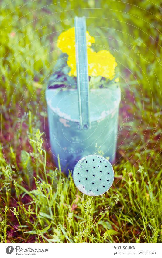 Alte Gießkanne auf dem Gras Lifestyle Stil Design Sommer Garten Natur Pflanze Frühling Herbst Blume retro altehrwürdig Rust Stillleben Wasserkanne gießen