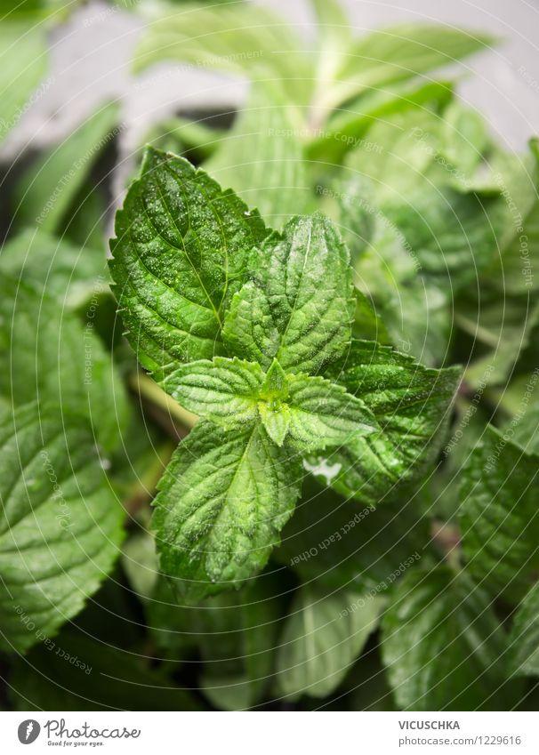 Frische Minze Lebensmittel Kräuter & Gewürze Bioprodukte Vegetarische Ernährung Diät Stil Design Alternativmedizin Gesunde Ernährung Garten Tisch Natur Pflanze