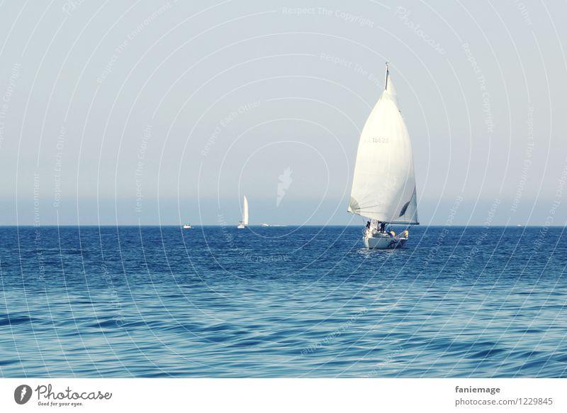 Segel blau Sommer weiß Reisefotografie Wärme Sport Horizont frisch Wellen Wind Schönes Wetter fahren mediterran Sommerurlaub Segeln Konkurrenz