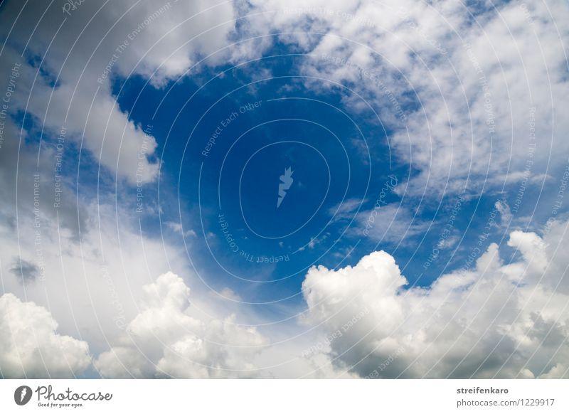 Schönwetterfenster Himmel Natur Ferien & Urlaub & Reisen blau Sommer Wasser weiß Wolken ruhig Ferne Umwelt Wärme Bewegung grau Freiheit oben