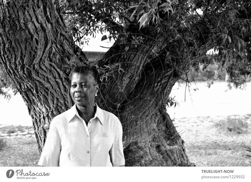 Schwarze, schöne, kurzhaarige Afrikanerin mit hellem Peren Ohrring steht lächelnd in weißem Hemd  an einem mächtigen alten Baum Stil Leben harmonisch Erholung