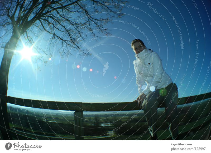 SUNSHINE wegweisend Richtung Ferien & Urlaub & Reisen Sonnenstrahlen Fischauge blau Baum gefallen Frau schön Himmelskörper & Weltall Wegweiser Wege & Pfade