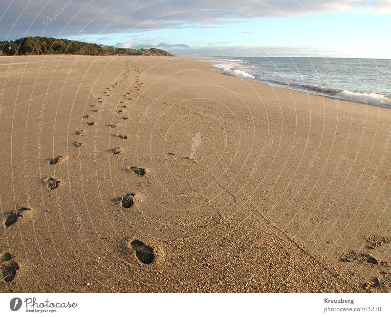 Spuren im Sand Neuseeland Strand Meer Fußspur Sonnenuntergang Wasser