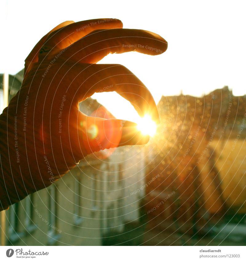 Hitzeschutz Sonne Freude Fenster Wärme lustig Beleuchtung berühren Schutz festhalten Idee Physik heiß fangen Hase & Kaninchen Ernte Griff