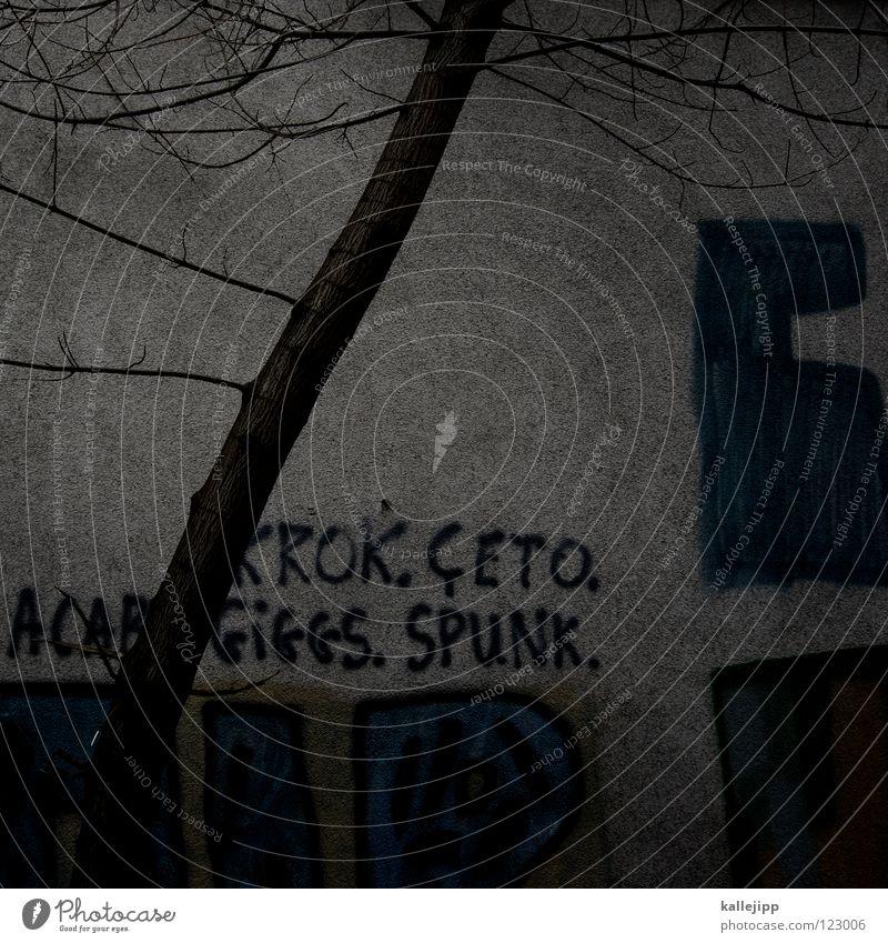3D vs. 2D Natur Stadt Baum Farbe Erholung dunkel Tod Graffiti Wand Herbst Mauer Traurigkeit Kunst Park Regen Wachstum