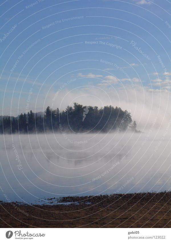 Morgennebel Natur Wasser Erholung See Küste Nebel Glätte