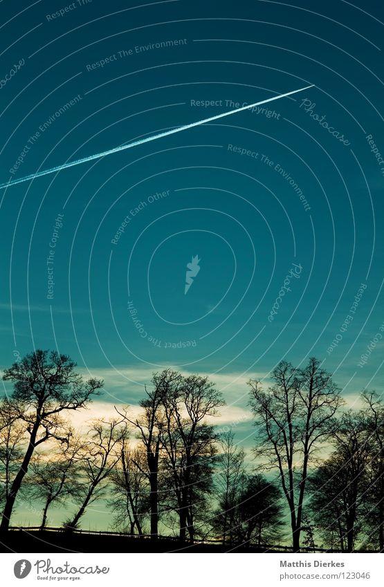 In den Süden... Himmel Ferien & Urlaub & Reisen blau schön weiß Baum Sonne Wolken dunkel Wald schwarz kalt Umwelt Beleuchtung Freiheit Linie
