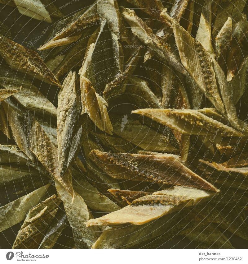 raute.106 außergewöhnlich Lebensmittel wild Ernährung Fisch lecker Teile u. Stücke geschnitten getrocknet Nutztier Asiatische Küche Indonesien Marktstand