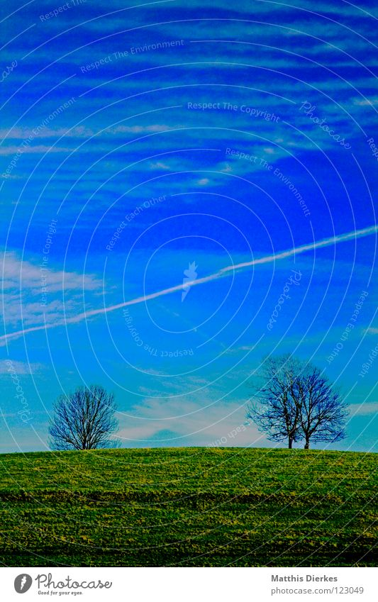 Hügel Frühling Februar März April Mai Feld Wiese Baum himmelblau hell-blau Wolken schlechtes Wetter Kondensstreifen 2 ländlich Obstbaum Abholzung Umwelt