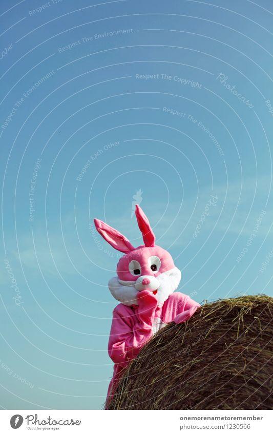 hoppla Natur Freude Kunst rosa ästhetisch warten verstecken Karnevalskostüm Schüchternheit Versteck Stroh spaßig Unsinn Spaßvogel erschrecken Deckung
